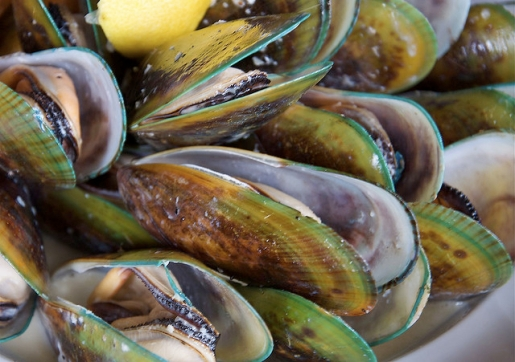 largeopenmussels-20100806-193335